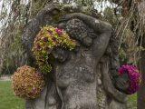 Florist Geoffroy Mottart