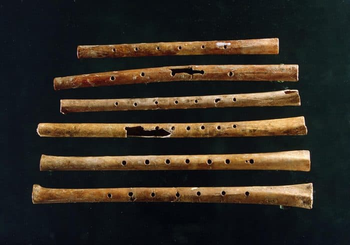 Oldest Playable Instrument