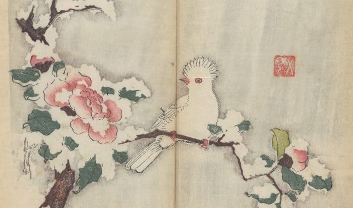 The World's Oldest Multicolor Book