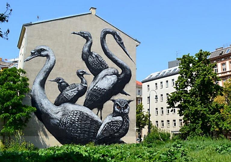 ROA Viena, Austria (2012)