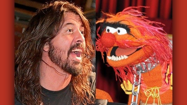 #world - Grohl vs Animal in Muppets drum-off - @Classic Rock Artes & contextos world grohl vs animal in muppets drum off classic rock